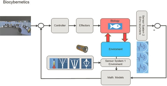 Aquaculture monitoring system